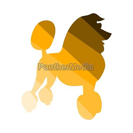 poodle icon