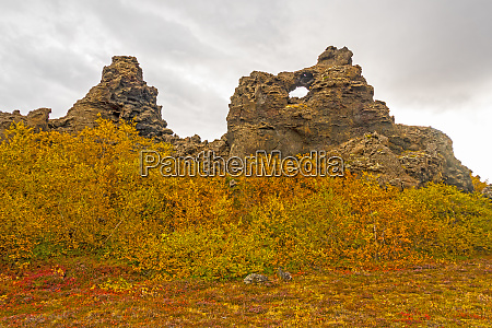 fall colors amidst the lava