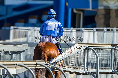 race horse jockey riding track start