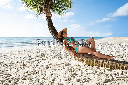 young woman relaxing on palm tree