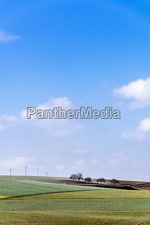 germany baden wuerttemberg taubertal fieldscape