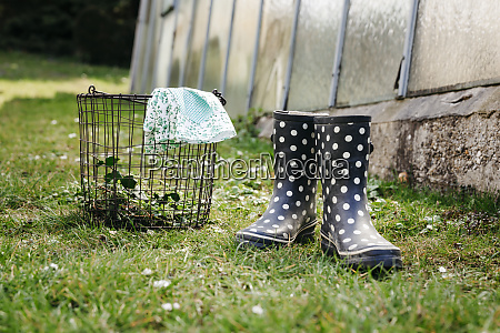 white dotted rubber boots