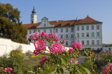 germany bavaria schaeftlarn abbey praelatengarten blooming