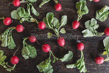 red radishes with leaves on dark