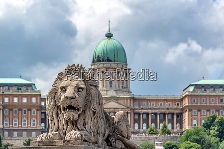 lion and national gallery in budapest