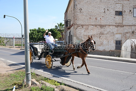 a horse drawn carriage on the
