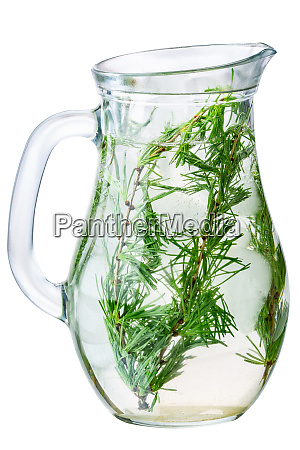 larch detox infused water jug paths
