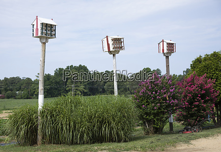bird houses in amish country in