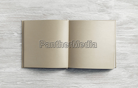 brochure or book