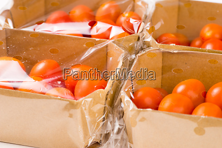 ripe cherry tomatoes packages in box