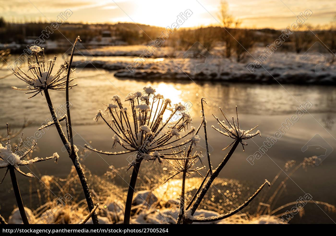 sunset, in, heidmork, lake, , iceland - 27005264