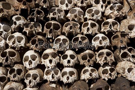 skulls arranged in a head in