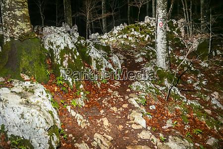 rocky mountain path