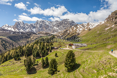 hiking trail on the alpe di