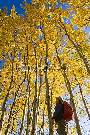 hiker bird watching in autumn with