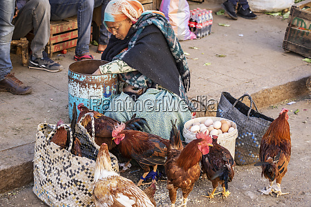 eritrean woman selling chickens at the