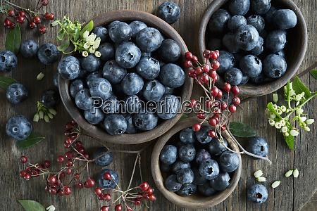 bowl of blueberries wooden spoon rosehip