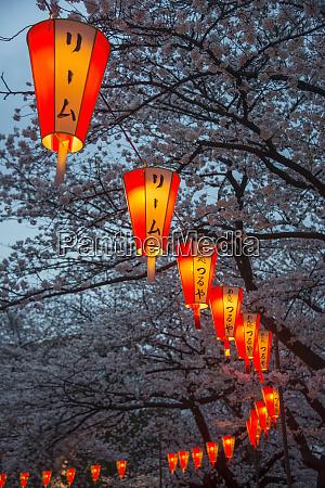 japan tokyo ueno ueno park row