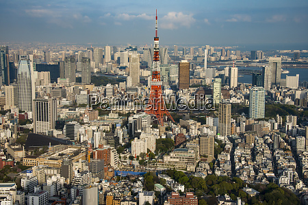 japan tokyo cityscape with tokyo tower