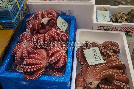 japan tokyo tsukiji boxes of fresh