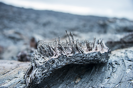 cold lava after an eruption of