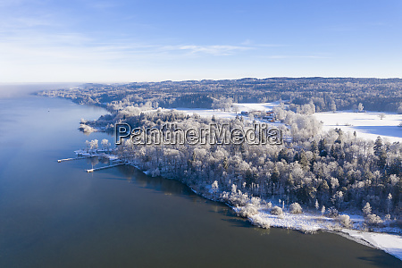 germany bavaria sankt heinrich snowy forest