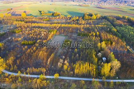 germany augsburg inningen reforestation