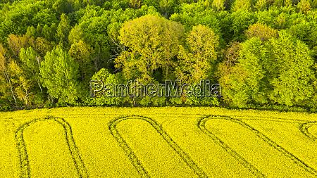 germany baden wuerttemberg swabian forest aerial