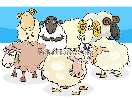sheep and rams group cartoon illustration