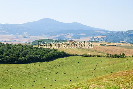 tuscany hills panorama summer view italian