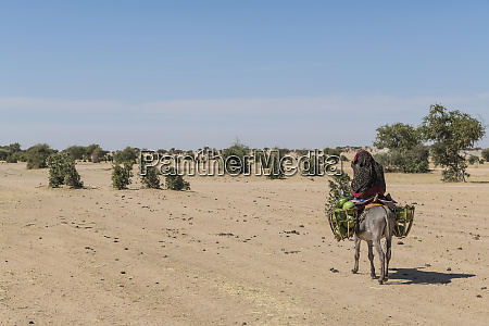 woman on her donkey abeche chad