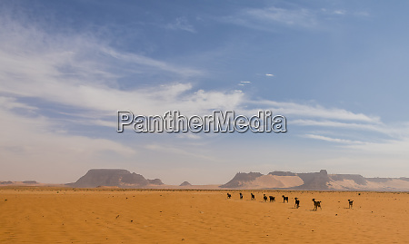 desert scenery in northern chad africa
