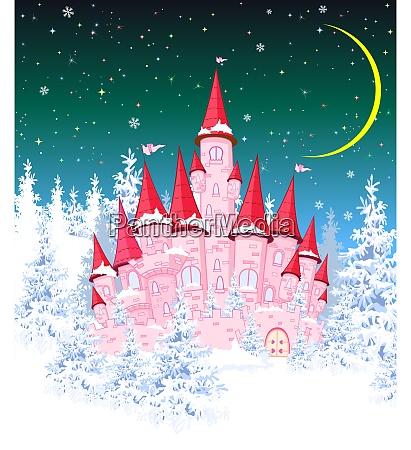 princess castle winter night