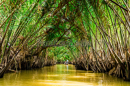 sailing through the tributaries of the