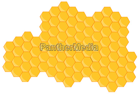 beehive honeycomb bee breakfast food