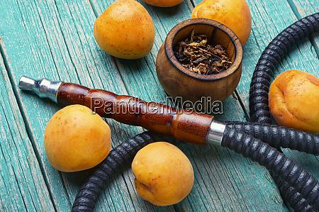 arabia shisha with apricots tobacco