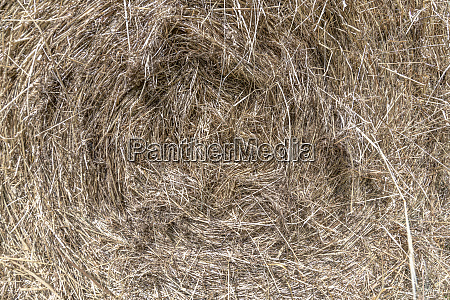 frontal view of a bale of
