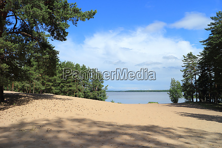 scenic view beach on the lake