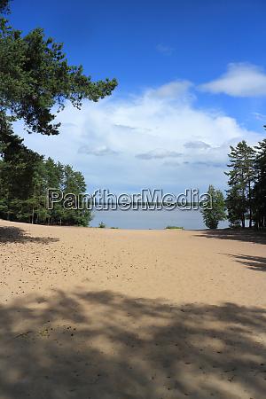beach on the lake among pines