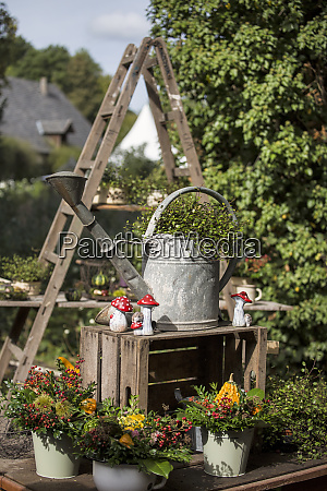 autumn decoration with old ladder