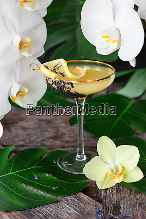 exotic cocktail with orchids