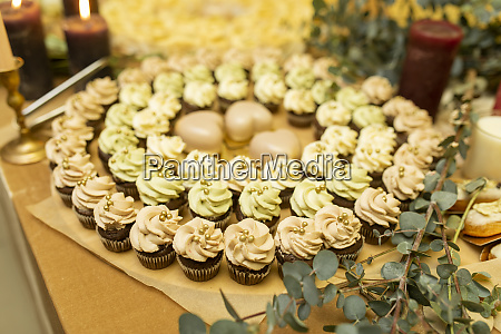 green and pink cupcakes in circle