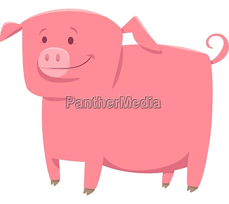 pig farm animal character cartoon illustration