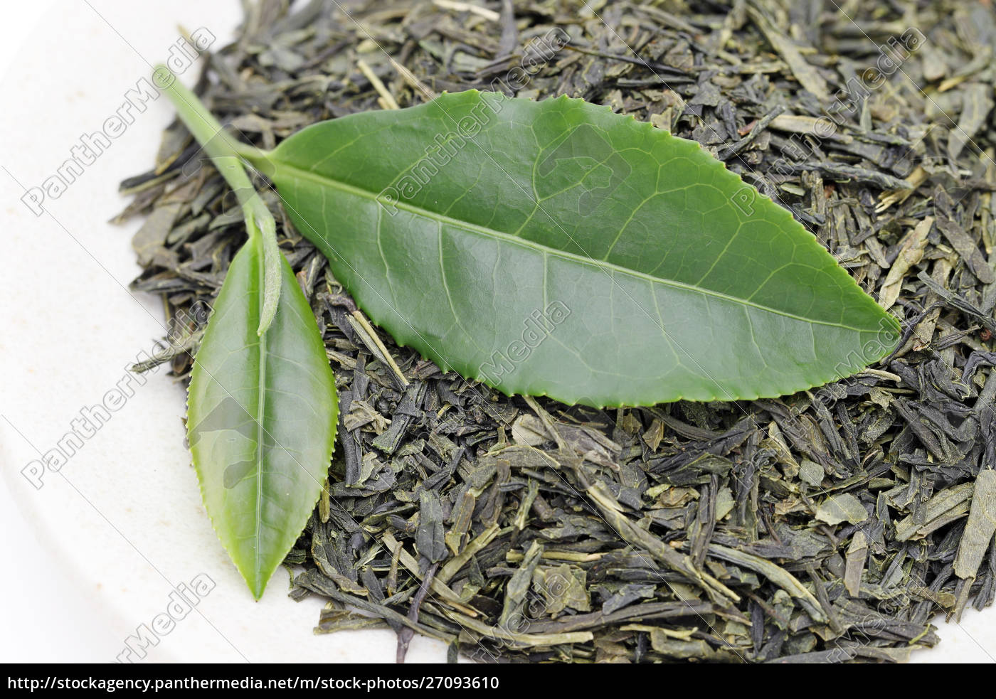 Green Tea Leaves With Dried Tea Leaves On White Stock Image 27093610 Panthermedia Stock Agency