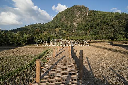 thailand phrae rice field ban nakhuha