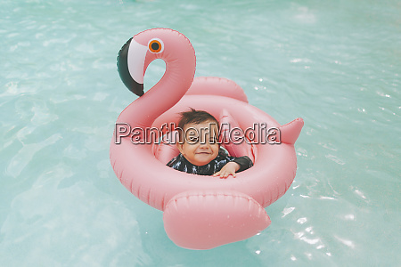 carefree baby boy in pink flamingo
