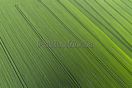 aerial view of abstract green agricultural