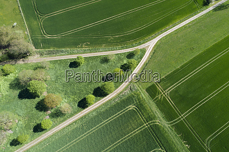 abstract aerial view of dirt road