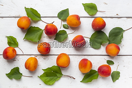 apricots on white wood