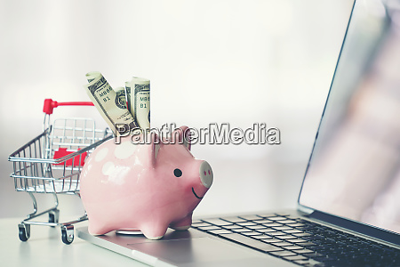 shopping cart and piggy bank with